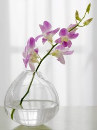Make your silk flowers look more real by adding illusion water.
