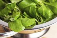 When shopping, look for bright green spinach leaves.