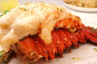 Roasting removes excess water from lobster meat, making it denser and sweeter.