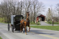 Horse-powered carriages share the road with motorized vehicles in Lancaster, Pennsylvania.