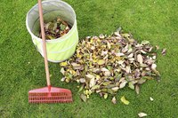 Collapsible bins hold a lot of leaves and make it easier to move them around.