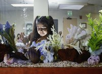 Young girl looking in aquarium.