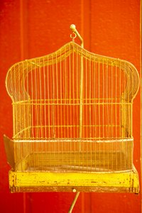 A birdcage can hang from a stand or chain attached to the ceiling.