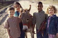 Group of children standing beside a donkey.