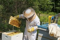 Accessorize your costume with DIY versions of beekeeper gear.