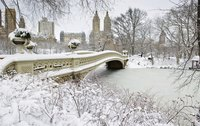 A cooler climate in winter provides unusual views of Central Park.