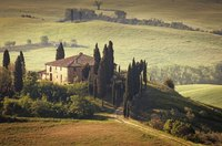 Earth tones in gold, ochre, beige, brown and green bring to mind the natural colors of the Tuscan countryside.