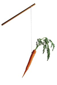 Sometimes, motivating employees involves knowing what carrot to dangle.
