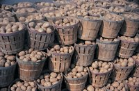 Store mature rather than young potatoes, as they have tougher skins.