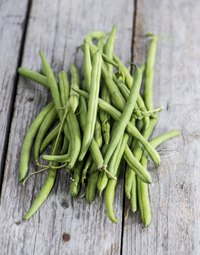 Canning is an excellent way to preserve fresh green beans.