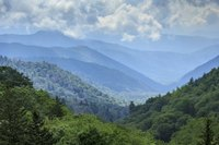 Bus tours help you navigate through the rugged Smoky Mountains terrain.