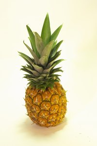 Use a real pineapple as your model while you make a replica out of paper mache.