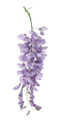 Use crepe paper to imitate the blooms on a wisteria tree.