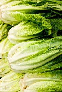 Prepare and store romaine lettuce to keep it from browning.