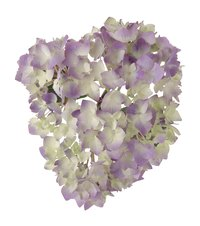 Create a hydrangea flower look-alike with fabric.
