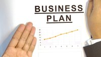 What Does the Executive Summary of the Business Plan Entail?