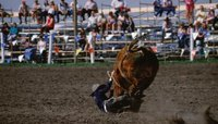 The Salaries of Rodeo Bullfighters
