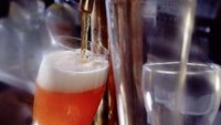 Analysis of the Microbrewing Industry