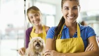How to Determine the Value of a Dog Grooming Business