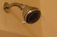How To Kill Shower Drain Flies And Worms Ehow