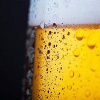 Food Basics Sells Beer