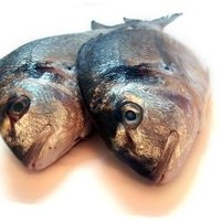 How to get rid of fish smells in the car ehow for How to get rid of fish odor
