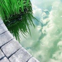 How To Make A Pond Liner Ehow