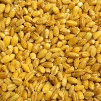 Grains High In Purine Content Ehow