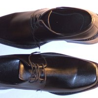 gumamela alternative shoe polish Is there significant difference between the effectivity of the shoe polish made from  ipil-ipil leaves and gumamela flowers extract and the.