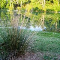 How to fill a pond ehow for Filling in a pond