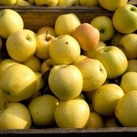 healthy fruit drink golden state fruit