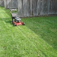 can applying sulfur to your yard get rid of ticks fleas ehow