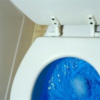The Water Level In My Toilet Is Too High Ehow