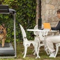 Choosing A Human Treadmill For Dog