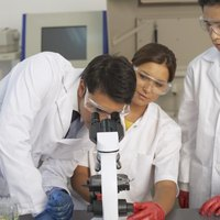 how to become a molecular geneticist