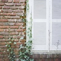 How to remove effervescent stains from bricks ehow for Painting brick exterior problems