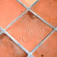 How To Remove Saltillo Tile Ehow