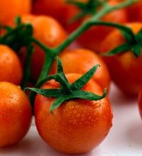 Cherry tomatoes usually are available year-round, giving you a never-ending supply of health benefits from these sweet little veggies. They're ...