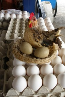 Eggs are a good source of vitamin B-12.