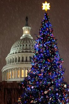 LED lights can make your outdoor decor as festive as the U.S. Capitol tree.