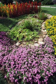 River rocks in plant beds define boundaries and create focal points in the garden.