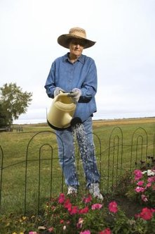 Watering by hand can target the roots of your existing plants.