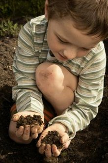 Greensand feeds the soil to grow healthier plants.