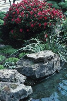 Landscaping flower bed rocks highlight the plants in your garden, but can also add structure and definition.