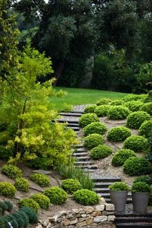 Steep slopes provide ample opportunity to display your landscaping creativity.