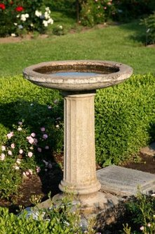 Use a birdbath to hide your septic riser.