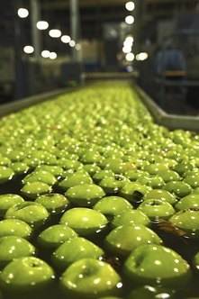 Food manufacturing plants, restaurants and even farms depend on food engineers.