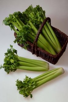 Celery seed from the spice rack will not grow the familiar green stalks of vegetable celery.