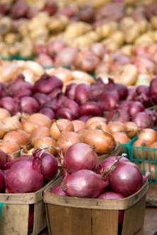 how to grow small onions at home
