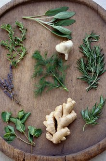 Find an herbalist program to pursue your passion.